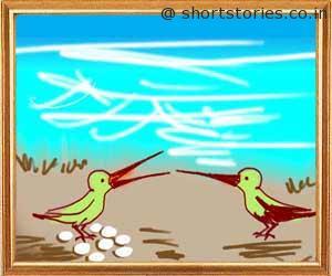 bird-pair-sea-panchatantra-tales-shortstoriescoin-image1