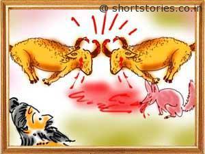 foolish-sage-jackal-panchatantra-tales-shortstoriescoin-image3