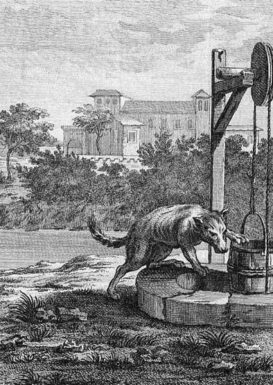 Jean de La Fontaine Fables - Book 11 - Fable 6