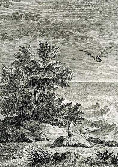 Jean de La Fontaine Fables - Book 12 - Fable 7