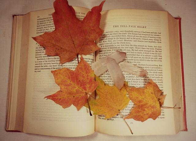 autumn-1041448_640