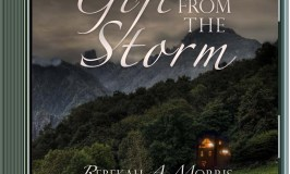 "Audio Book Giveaway – ""Gift from the Storm"""
