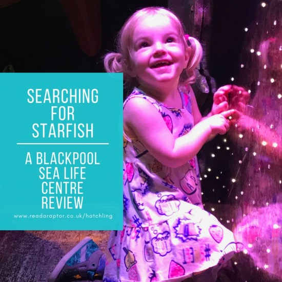Searching for starfish – A Blackpool Sea Life Centre review