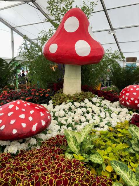 Giant toadstools on the Alice in Wonderland display at Southport Flower Show