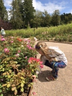 Smelling roses at Lowther Castle