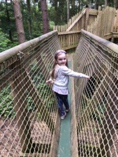 The Lost Woods Play Area at Lowther Castle