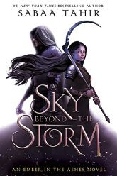 cover for A Sky Beyond the Storm