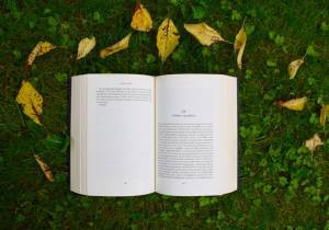 An open book lying on the grass, surrounded by fallen leaves, brings to mind the widespread focus on nature in the works of many writers during the American Romantic era.