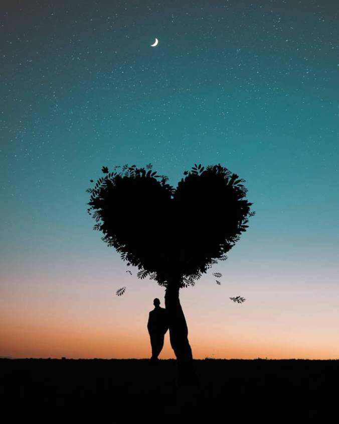Silhouette of Man under tree shaped like heart with twilit background
