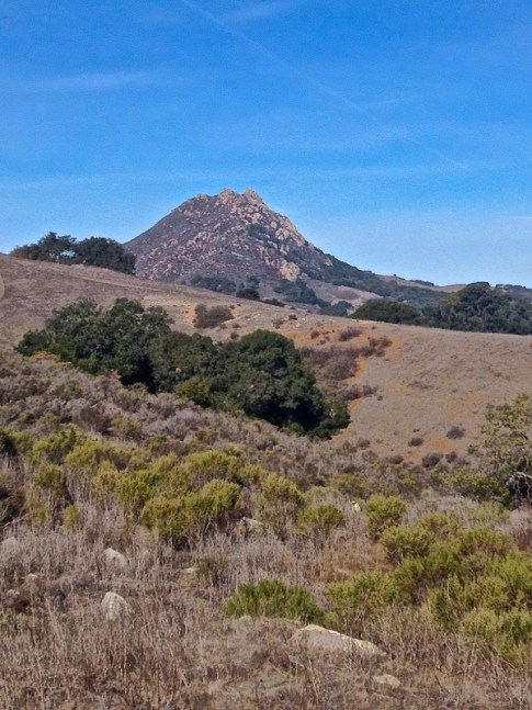 View of Bishop's Peak that we climbed the other week.