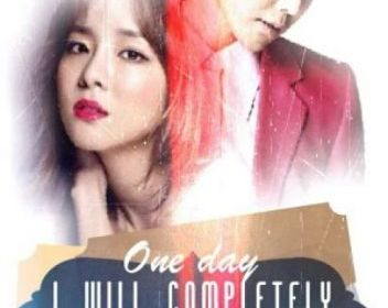 one day i will completely forget you novel