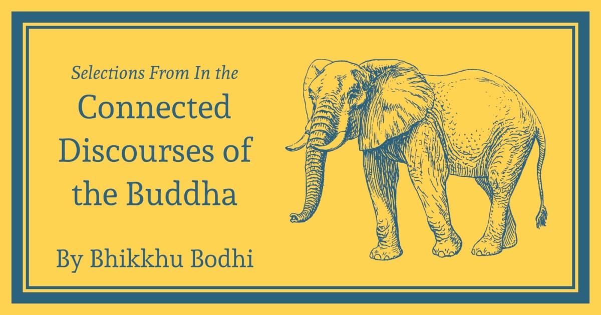 Samyutta Nikaya: Selections from the Connected Discourses: Free Kindle, Epub,  Mobi