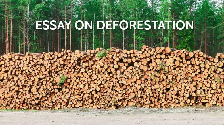 It can also happen gradually as a result of ongoing forest degradation as temperatures rise due to climate change caused by human activity. Essay On Deforestation For Students And Children In 1000 Words