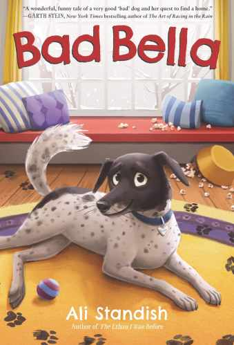 Best Early Chapter Books for Boys (Ages 6-10) - Bad Bella