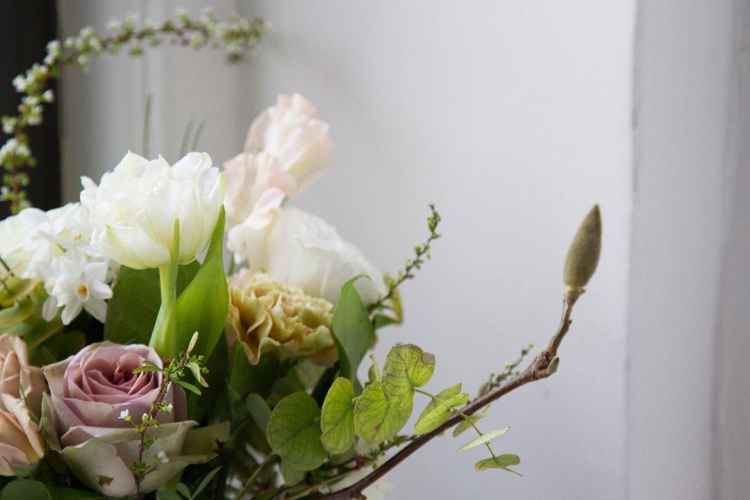 flowers | reading my tea leaves