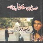 Thori Si Wafa Chahiye By Wasi Shah Pdf Download