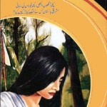 Hamari Shikast Ki Kahani By Inayatullah Pdf Download