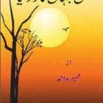Kis Jahan Ka Zar Liya Novel By Umera Ahmad Pdf
