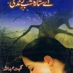 Aye Sitara Shab e Zindagi By Nighat Abdullah Pdf