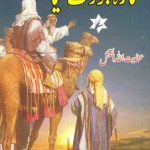 Sitara Jo Toot Gaya Novel By Inayatullah Pdf Download