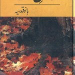 Saman E Wajood Stories By Bano Qudsia Pdf