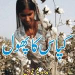 Kapas Ka Phool By Ahmad Nadeem Qasmi Pdf Free