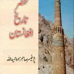 Mukhtasir Tareekh Afghanistan By Hameed Ullah Pdf