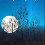 Apne Aur Paraye Chand Novel By Nighat Seema Pdf