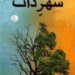 Shehar e Zaat Novel By Umera Ahmad Pdf