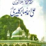 Ali Ahmad Sabir Kalyari By Waheed Ahmad Sabri Pdf
