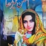 Aangan Terha Novel By Mirza Amjad Baig Pdf