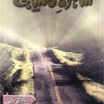 Shahrah e Kamyabi By Faiza H Sial Pdf Download