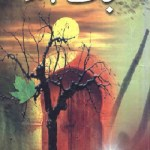 Nijat Dahinda Novel By Nighat Seema Pdf Free