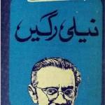 Neeli Ragein Novel By Saadat Hasan Manto Pdf