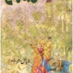 Hassan Bin Sabah Novel By Almas MA Pdf