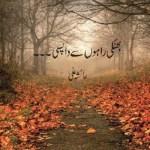 Bhatki Rahon Se Wapsi Novel By Ayesha Ali Pdf