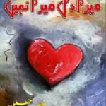 Mera Dil Mera Nahi Novel By Nasir Hussain Pdf