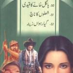 Jasoosi Duniya Jild 16 Urdu By Ibne Safi Pdf