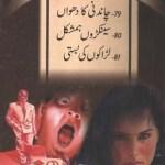 Jasoosi Duniya Jild 26 Urdu By Ibne Safi Pdf