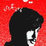 Shaheen Sifat Novel By Pervez Bilgrami Pdf Download