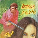 Diamond Blaster Imran Series By Zaheer Ahmed Pdf