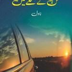 Mann Ke Mohalle Mein By Shakeel Ahmad Chohan Pdf