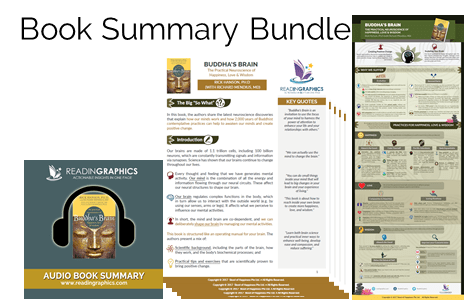 Buddha's Brain summary_bundle