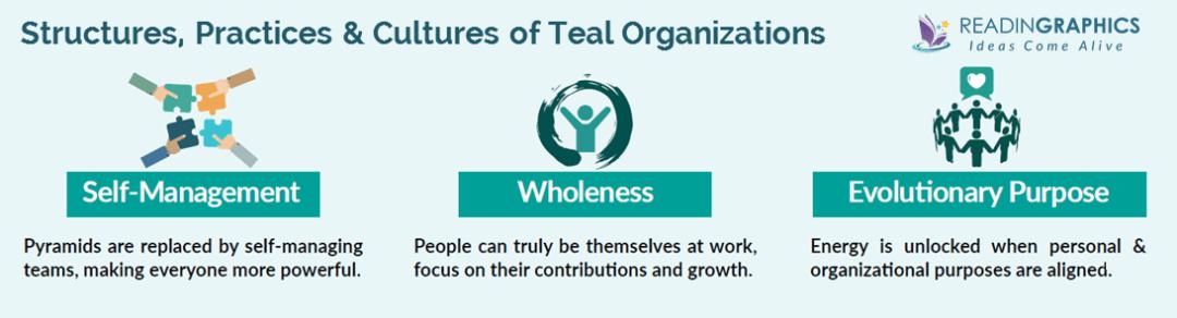 Reinventing Organizations summary_teal organizations