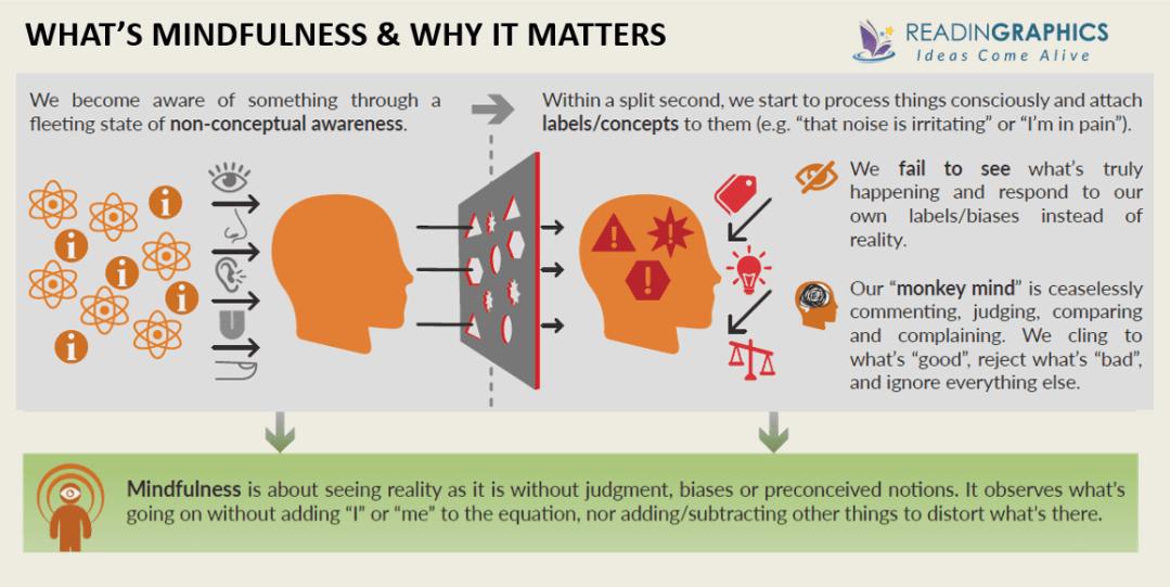Mindfulness in Plain English summary_Mindfulness explained