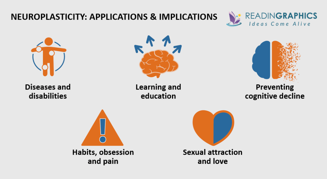 The Brain that Changes Itself summary - neuroplasticity applications