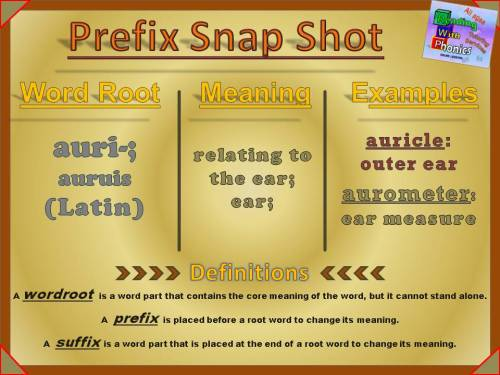 auri-Prefix Snap Shot