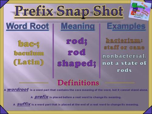 bac-prefix-snap-shot