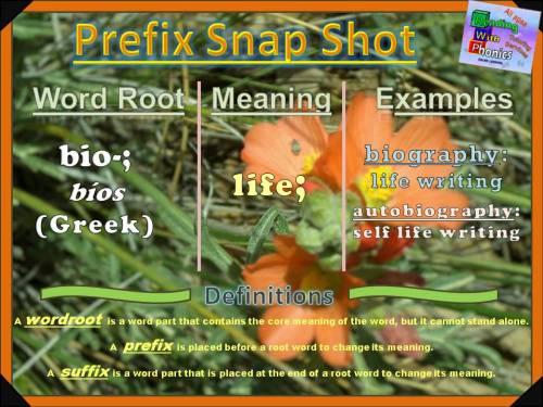 bio-prefix-snap-shot