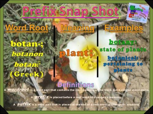 botan-prefix-snap-shot